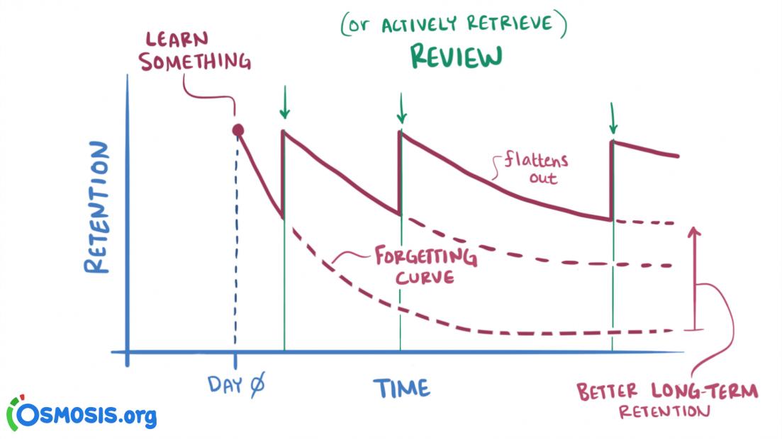 如何高效记忆?以科学为基础的 14 种记忆策略